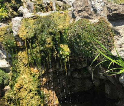 A Fairytale Waterfall