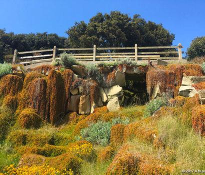 A giant rockery